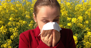 Allergien 310x165 - Hilft vegane Ernährung bei Allergien?