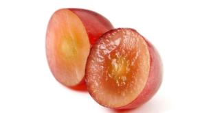 Traubenkern 310x165 - OPC Traubenkernextrakt – ein wirksames Antioxidant