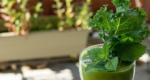 Grüne Smoothies - gemixte Power aus dem Glas